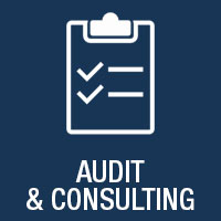 audit & consulting